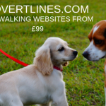 Dog Walking Websites